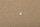 2742042 - 1.201.320 - Nylonstift