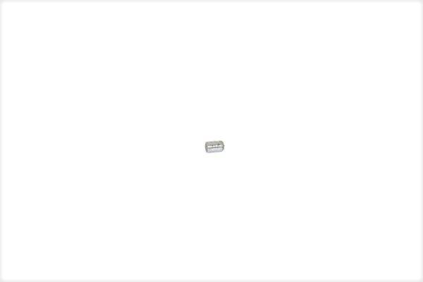 2742260 - 1.203.111 - Rasterbolzen-Seitenverstellung